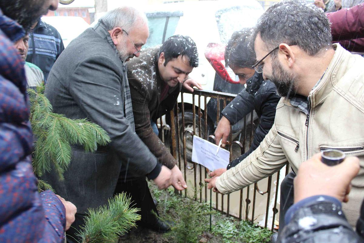 CUK V-C launches plantation drive in varsity
