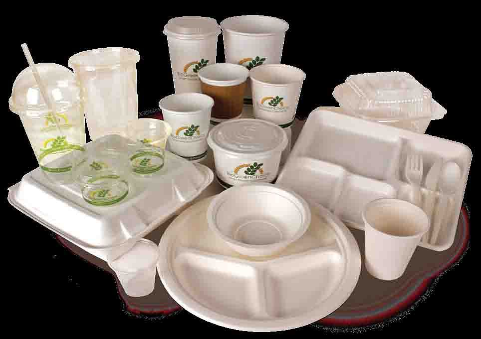 Non biodegradable disposables banned in J&K