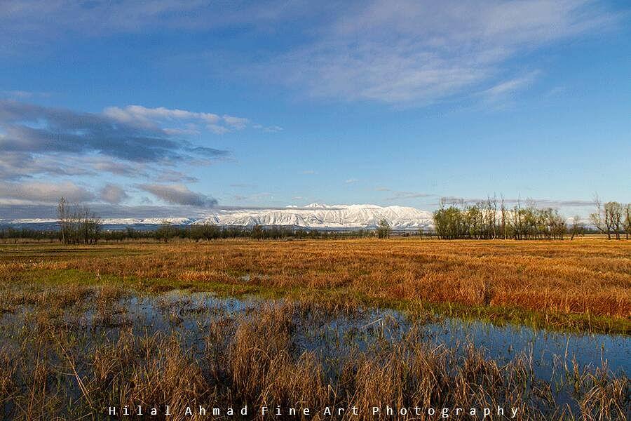Panel to demarcate Hokersar wetland