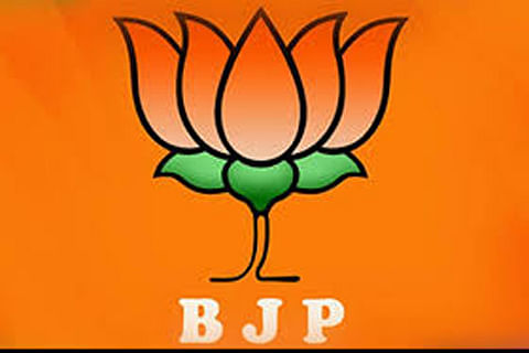 BJP leader wants assembly polls deferred