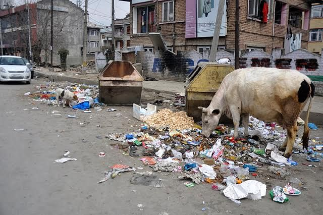 When will Govt wake up to garbage crisis in Cantt Board areas?