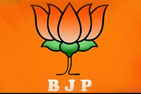 Gupkar Alliance is pro-Pakistan: BJP