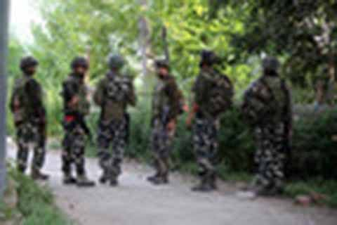 Forces launch searches in Shariefabad Tral