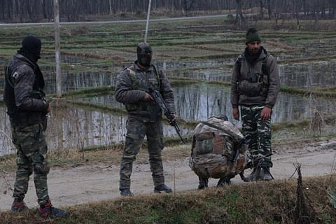 Gunfight breaks out in south Kashmir's Shopian, third in a day