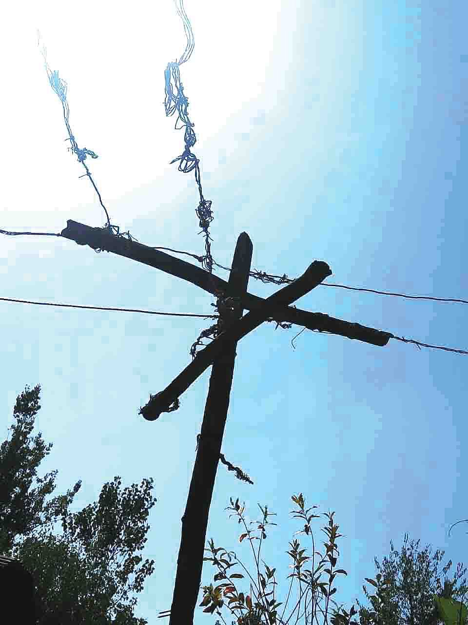 Live electric wires on wooden poles, trees pose danger