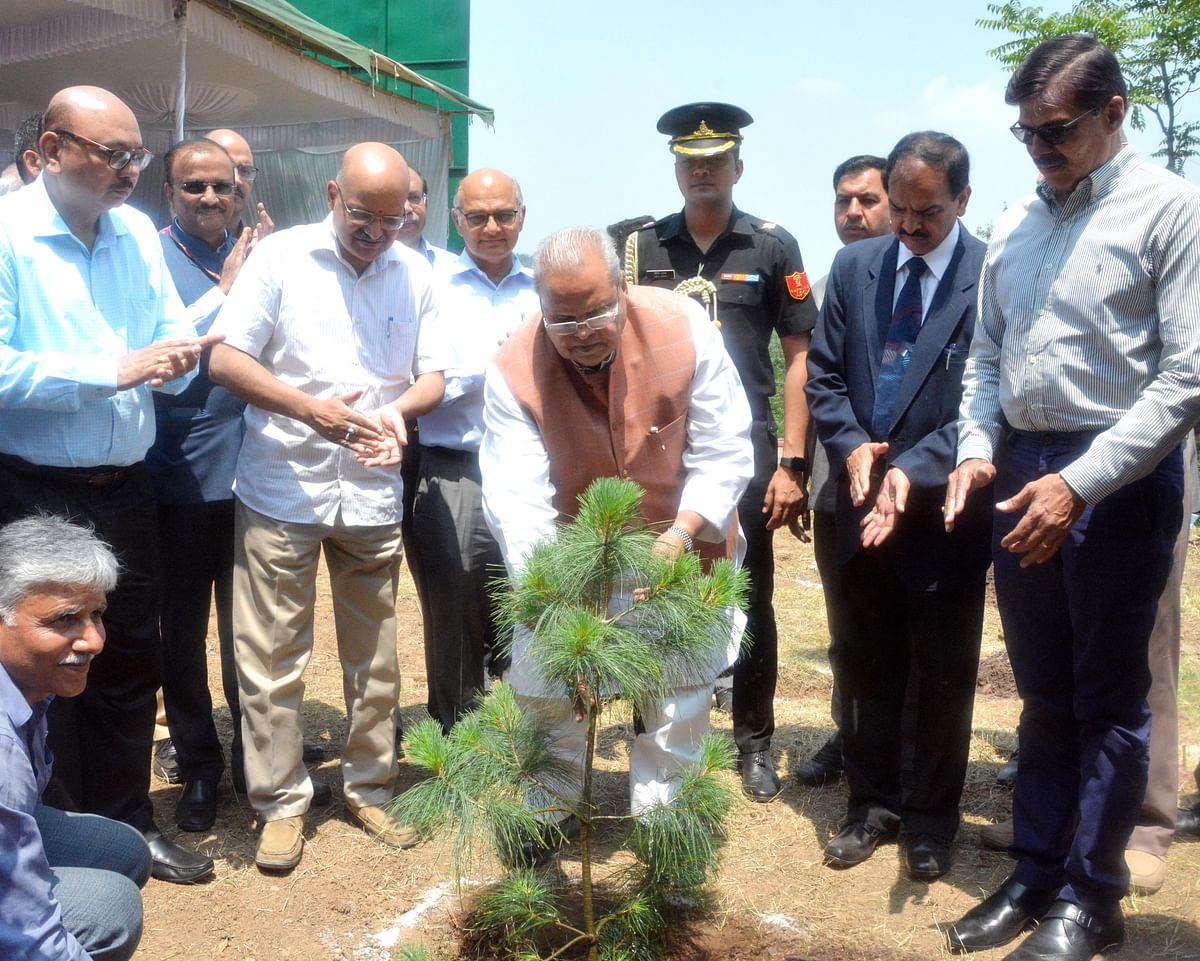 Governor launches 'Green J&K Drive', 50 lakh trees to be planted by June next year