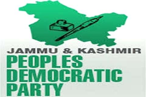 PDP women's wing chief seeks permission to meet party president
