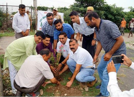 Greening J&K programme gains momentum