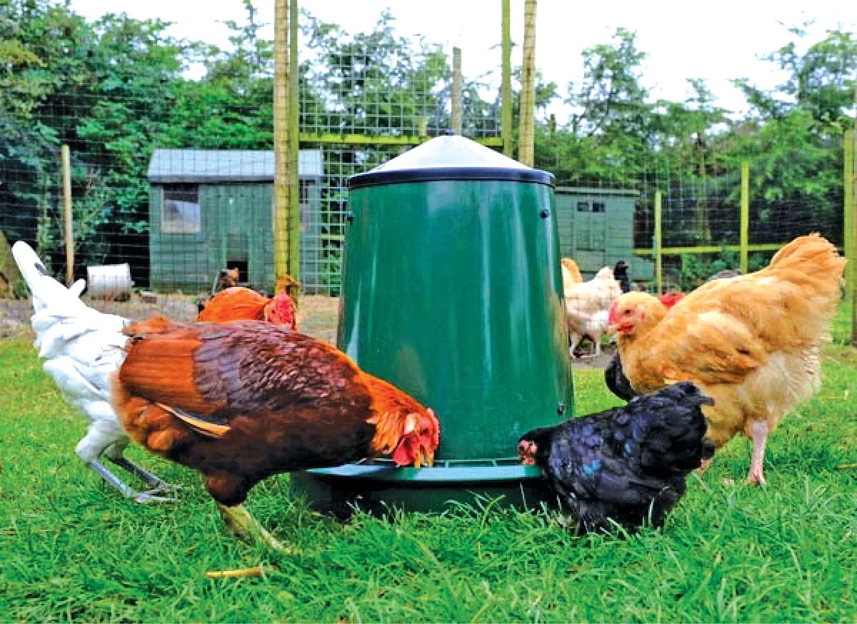 People hail govt decision to establish poultry estate in Tral