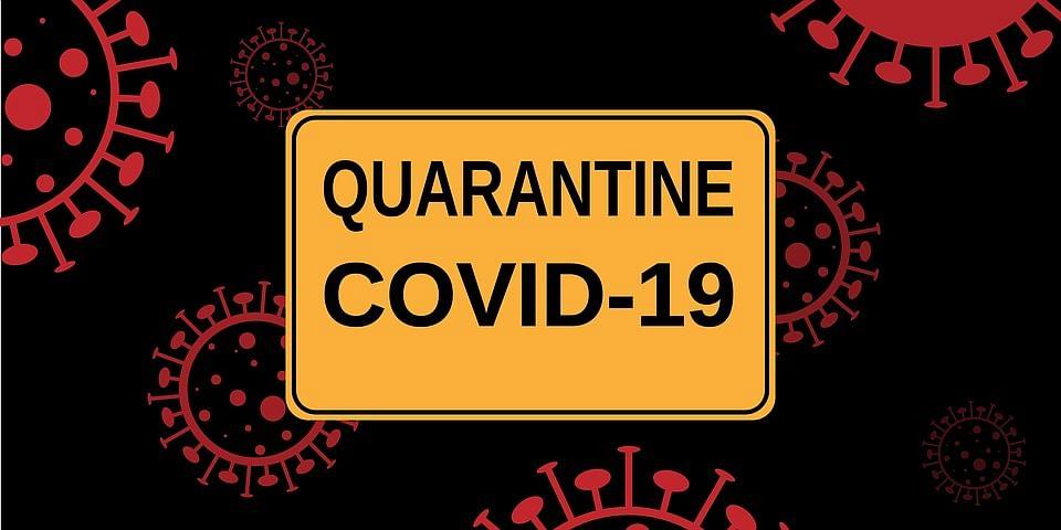 Now, animals also to undergo quarantine in J&K