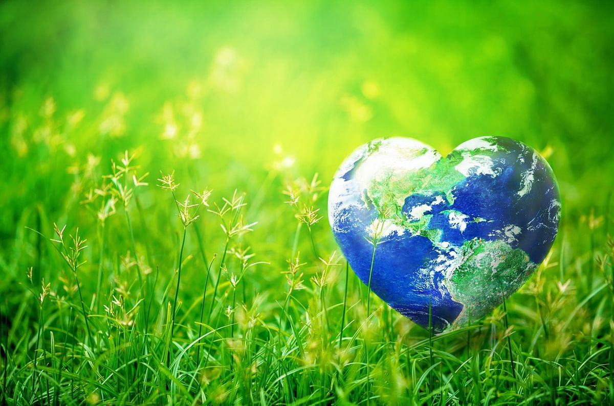 Mother Earth: A call for action