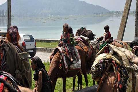 Govt bans movement of nomads through red zones