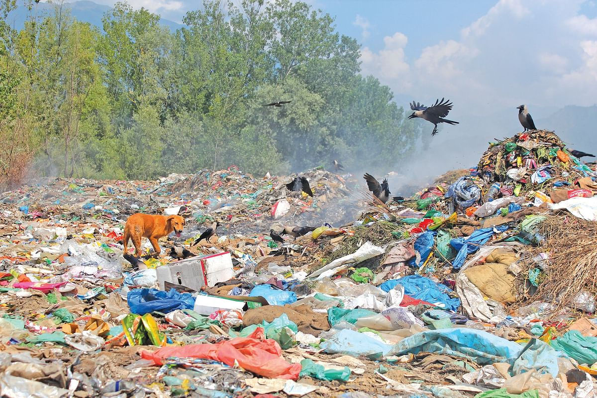 Dumping Of Solid Waste On Wular Banks | HC asks panel to report on DLSA proposed sites