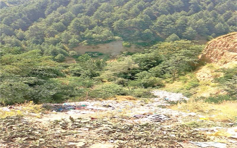 Why deny rights to Forest Dwellers of J&K ?