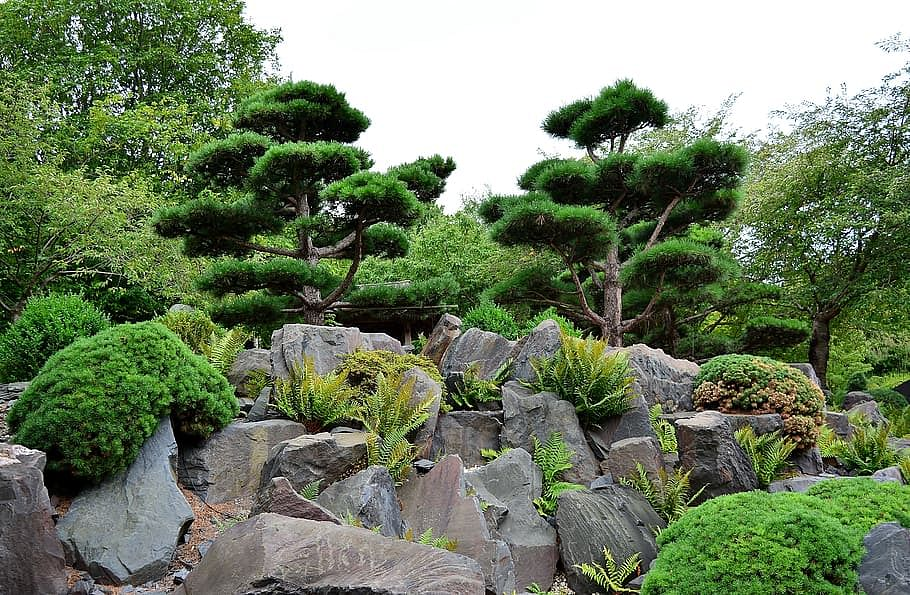 Kashmir's first-of-its-kind 'Rock Garden' to come up at Ganderbal