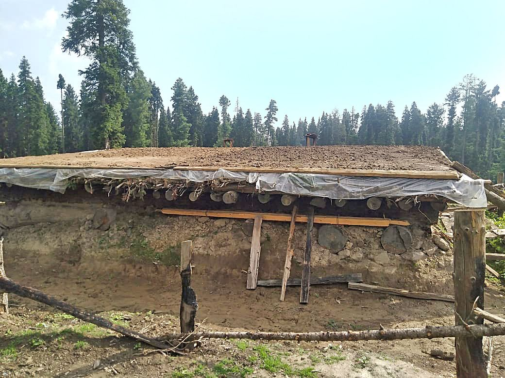 Forest team to verify reports of damages in Doodhganga area