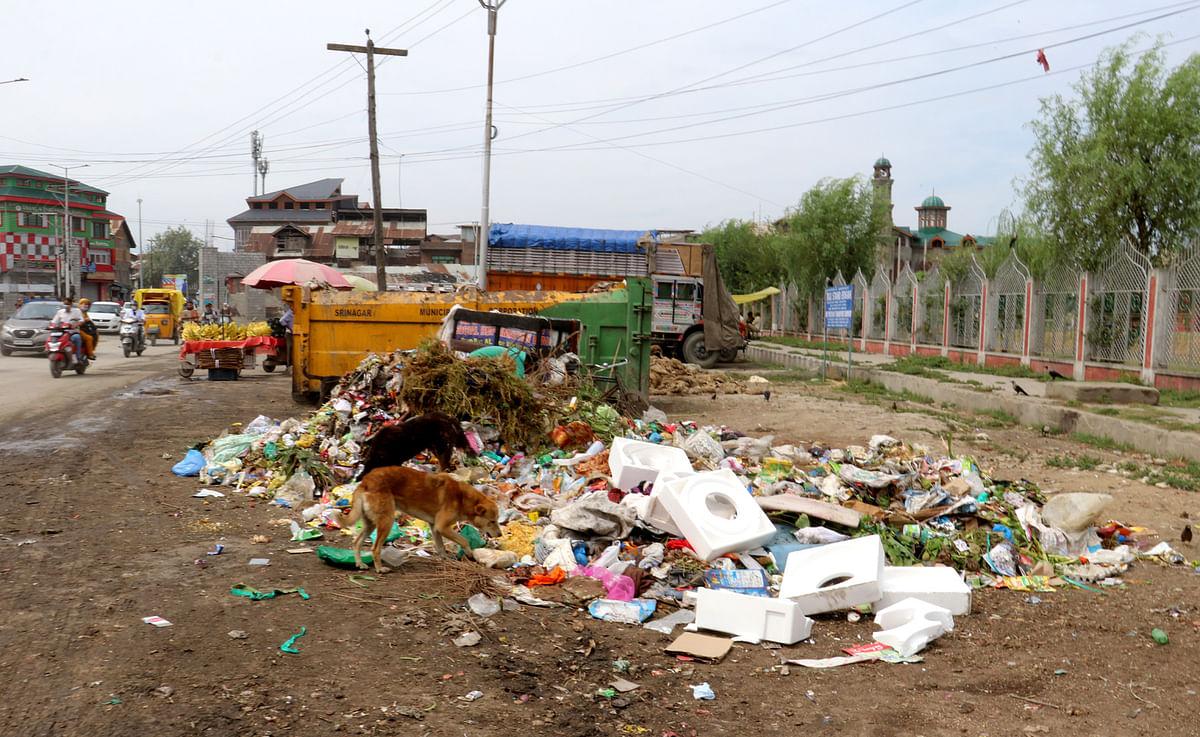 'Clean Srinagar': Evening sanitation drive to keep city 'garbage free'