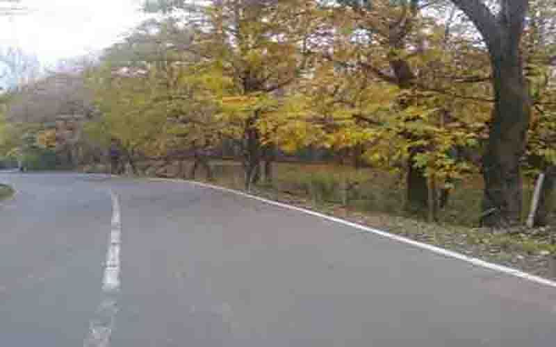 Several Reasi villages lack road connectivity