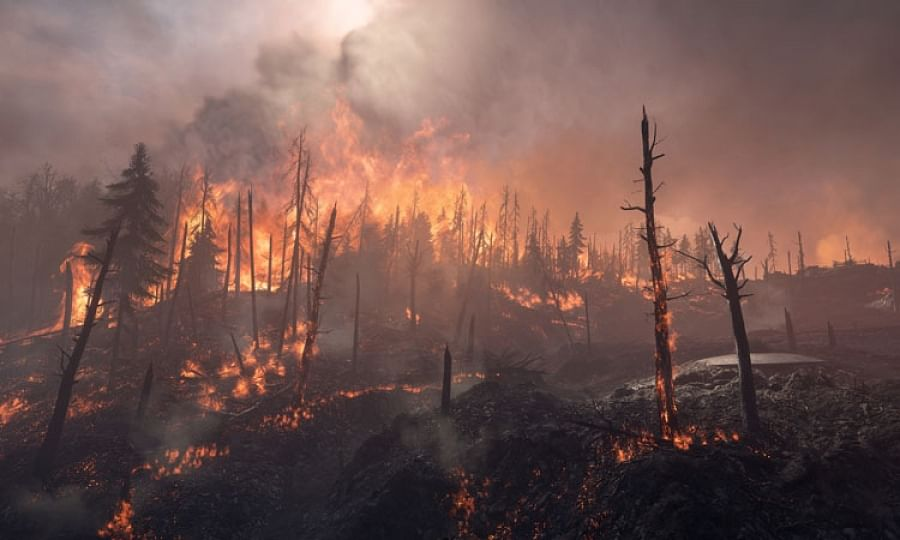 Forest fire breaks out in Baramulla