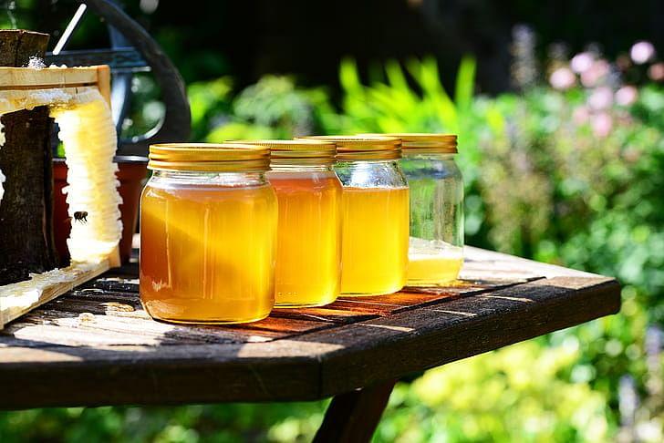 GI registration for Kashmiri Rice, Kala Zeera, Honey, Red Chilli in pipeline