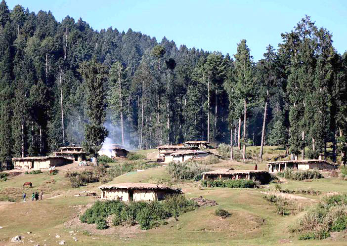 Violation of Forest Rights Act – V