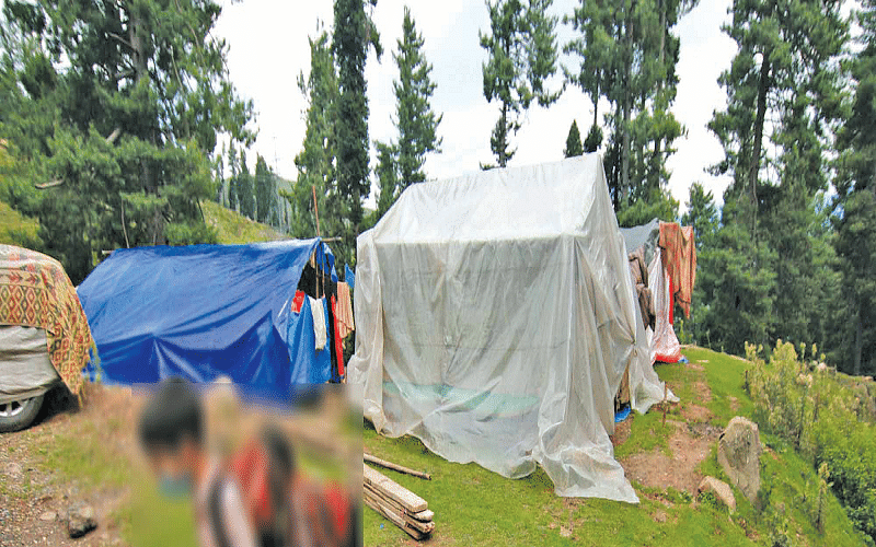 Violation of Forest Rights in J&K- II