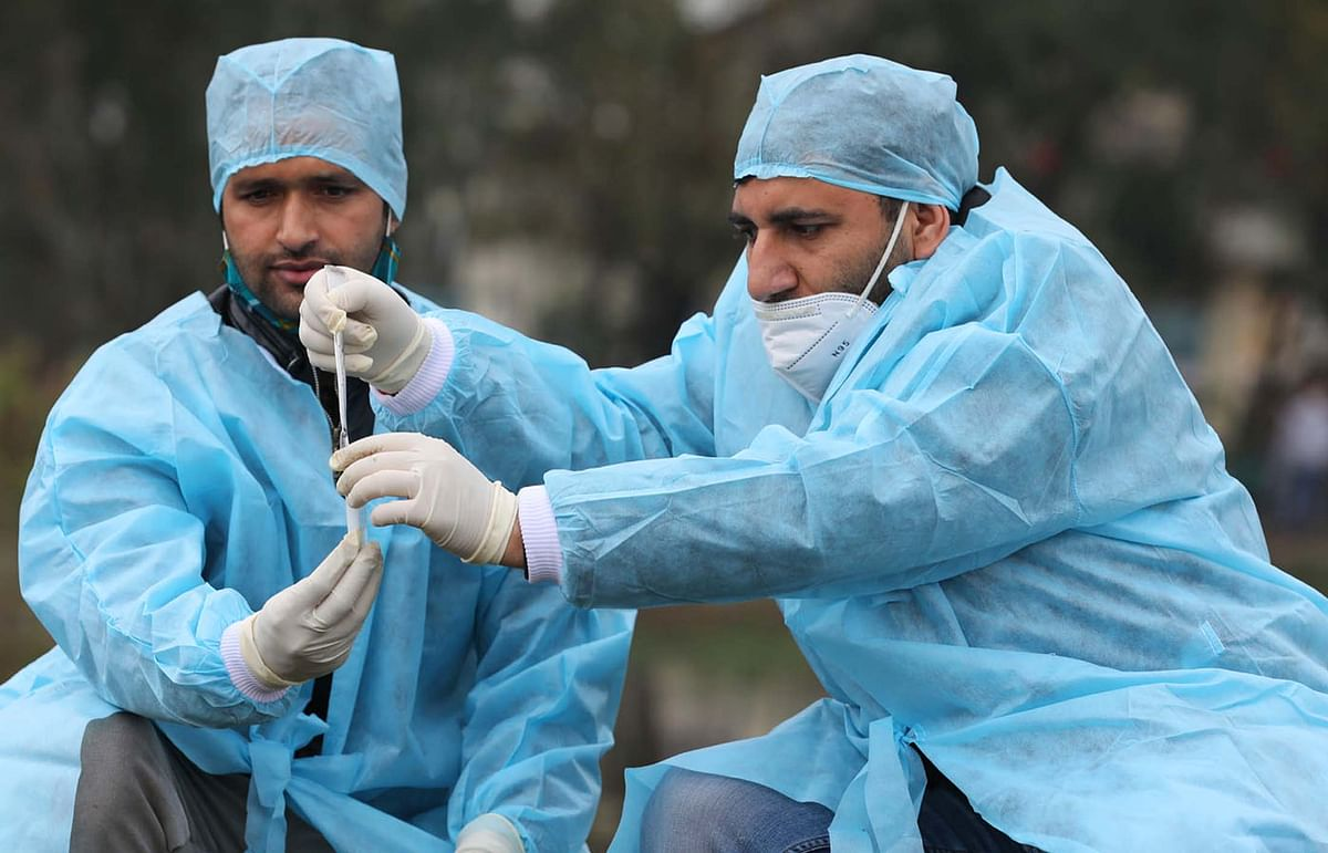 Bird Flu: Unusual mortality reported in some districts of Jharkhand, J&K