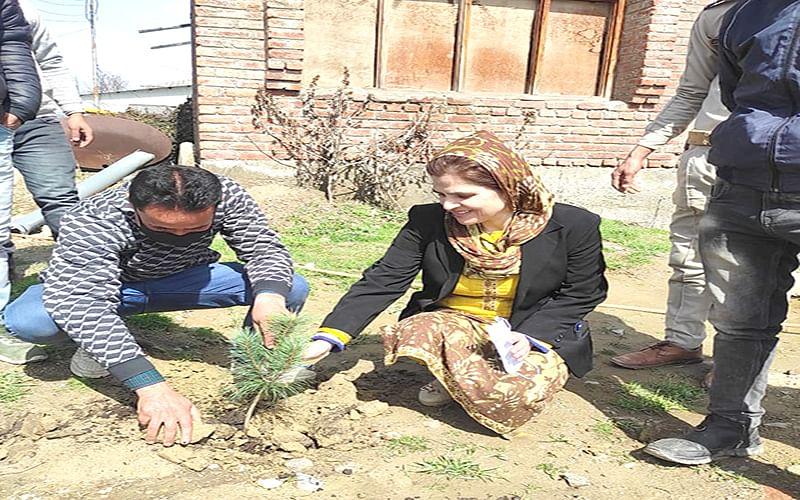 Plantation drive held at CHC Sopore