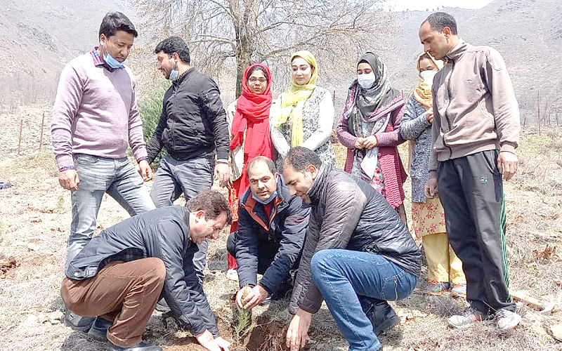 SKUAST-K organises plantation drive at Faculty of Forests, Fisheries