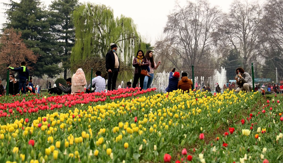 Lending hand to Kashmir's Tourism Industry
