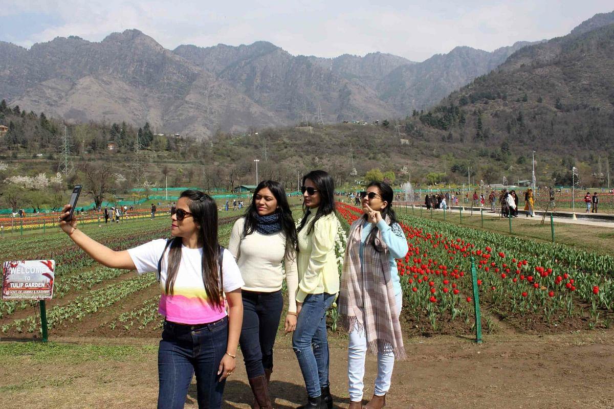 Over 40,000 people visit Tulip Garden in 5 days