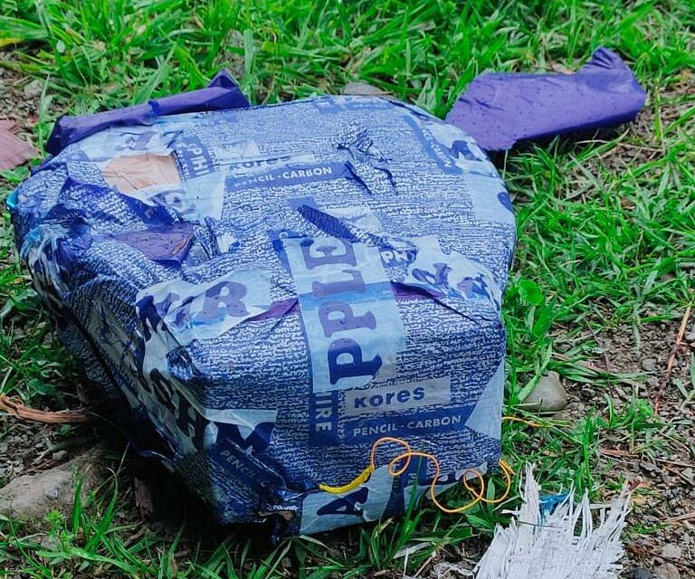 IED recovered in south Kashmir's Pulwama, defused: Police