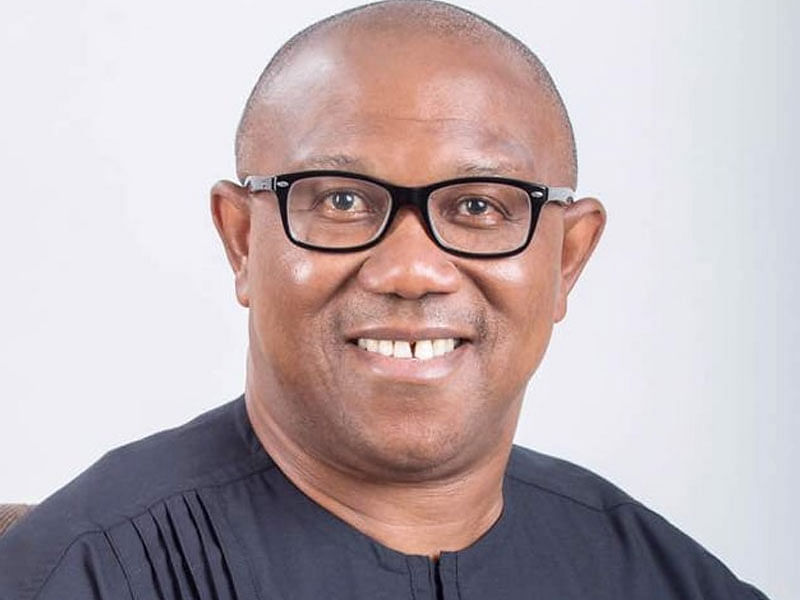 Peter Obi Is Hale And Hearty - Media Aide