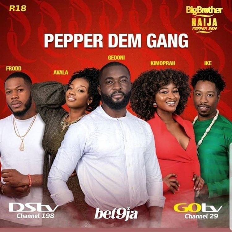BB Naija: Insider Reveals Why Theme Was Changed From 'Forget Wahala' to 'Pepper Dem Gang'
