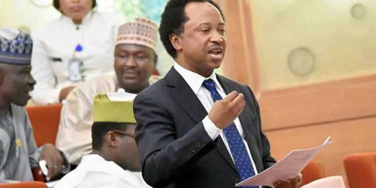 Shehu Sani Loses At Tribunal, May Head To Appeal Court
