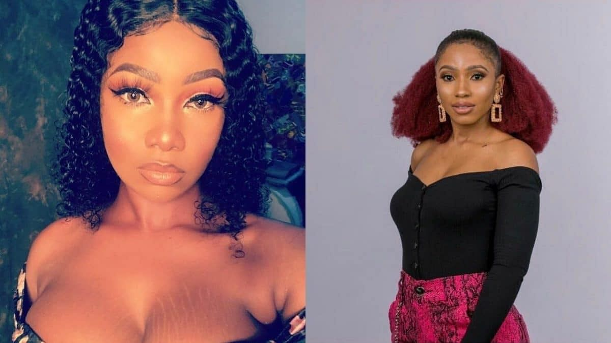 BBNaija: Don Jazzy Reacts As Tacha And Mercy Get Strikes From Biggie