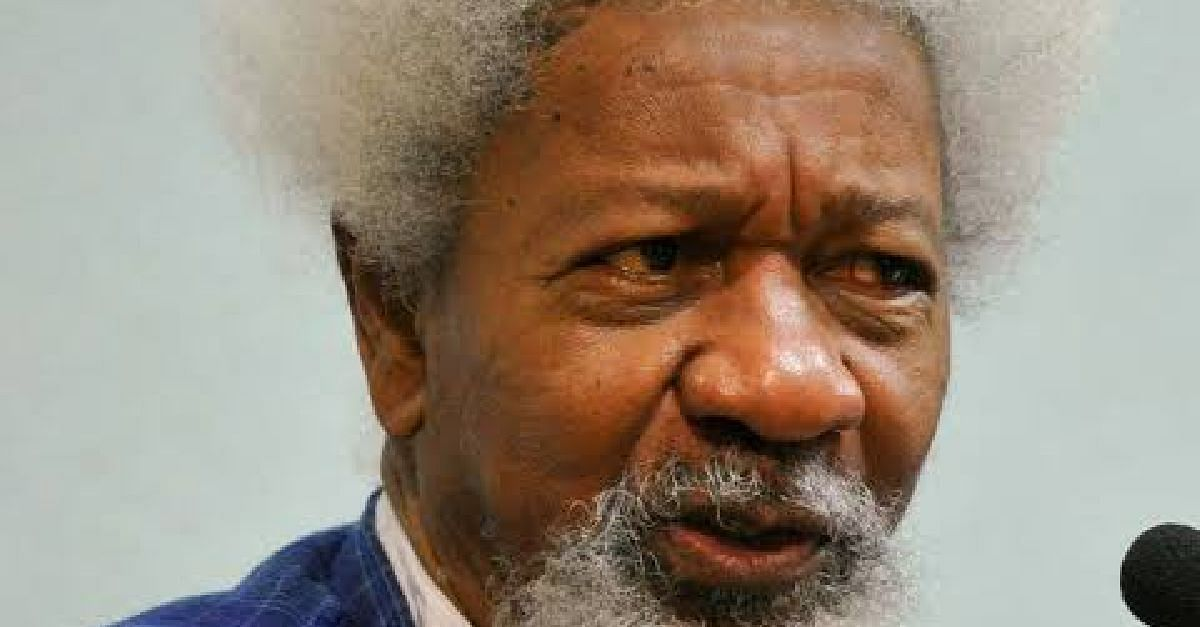Wole Soyinka's Daughter Among Appointees For Police Trust Fund Committee