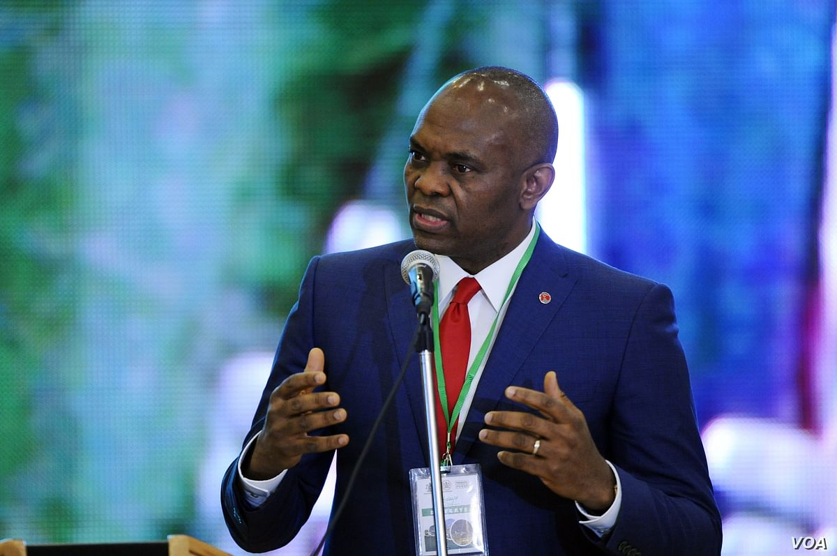 Tony Elumelu Proposes Job Creation As The Solution To Poverty And Extremism