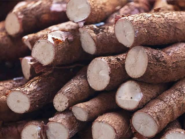 Nigeria Imports $600M Worth Of Cassava Products Annually – CBN