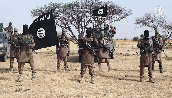 Boko Haram Insurgents Attack Yobe, Cart Away Foodstuff