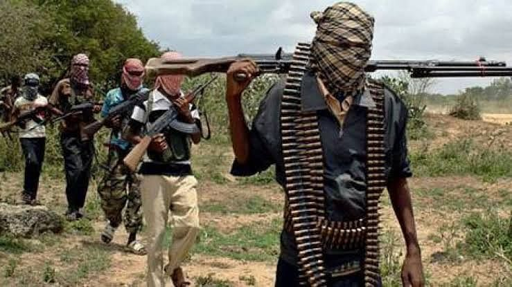 Suspected Boko Haram Insurgents Kill Six In Adamawa