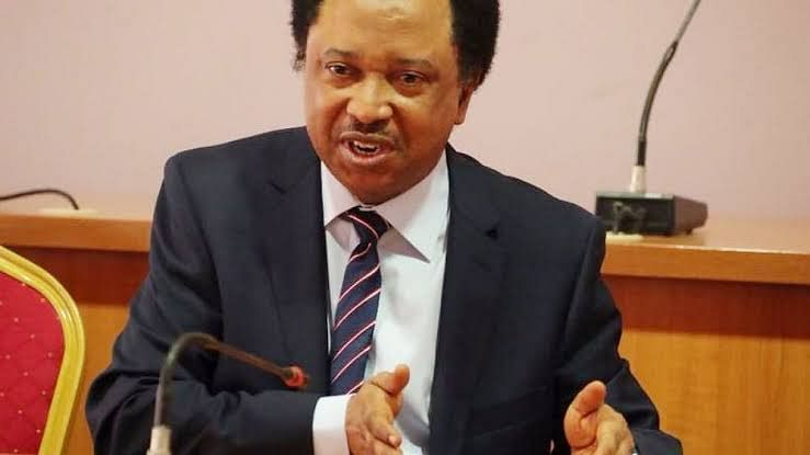 """Don't Expect Change Under Buhari In 2020,"" Sani Tells Nigerians"