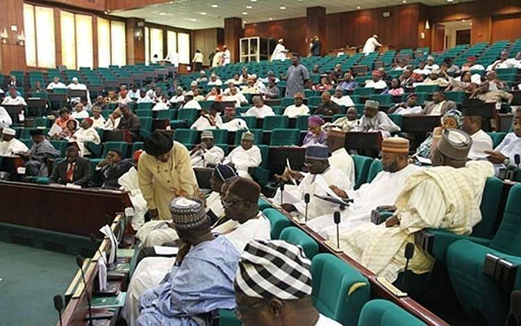 Reps Issue Warning To MDAs Over Remitting Audited Accounts