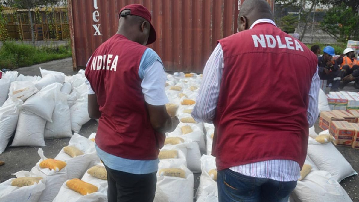 NDLEA Destroys 34,560KG Of Drug Substance In Ogun