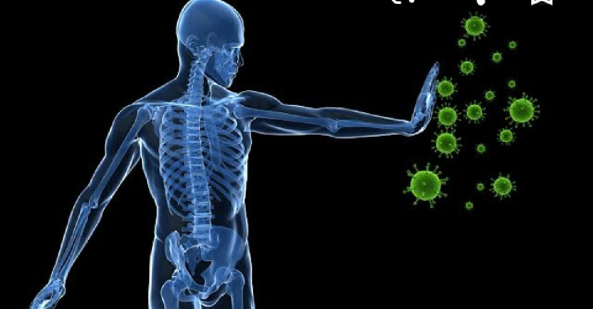 6 Ways To Strengthen Your Immunity