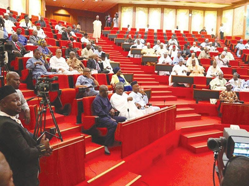Senate: We Discovered That Some  MDAs Spend Inappropriately