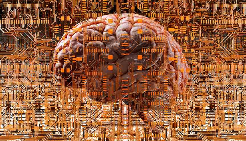 Study finds 'spooky' similarities between human brains and computers