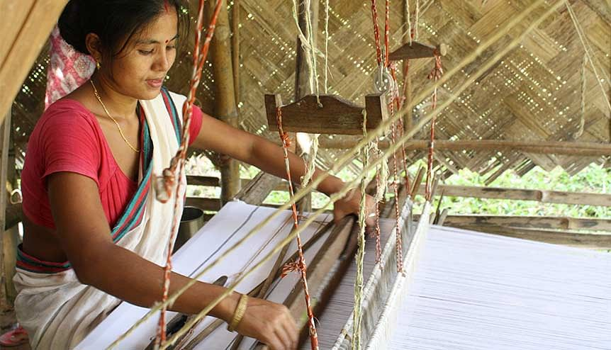 Investing in fighting climate change with silk weaves