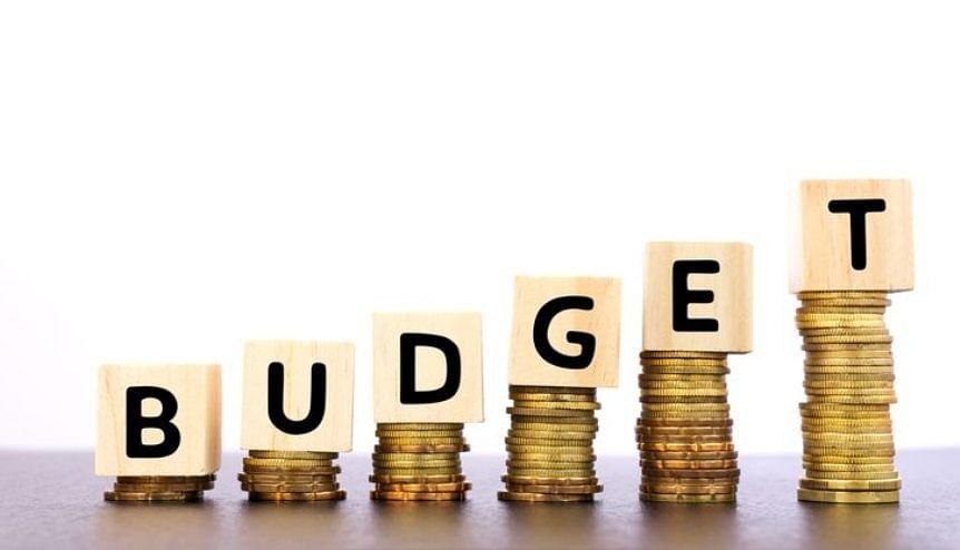 Sitharaman presents clean, green, realistic Budget