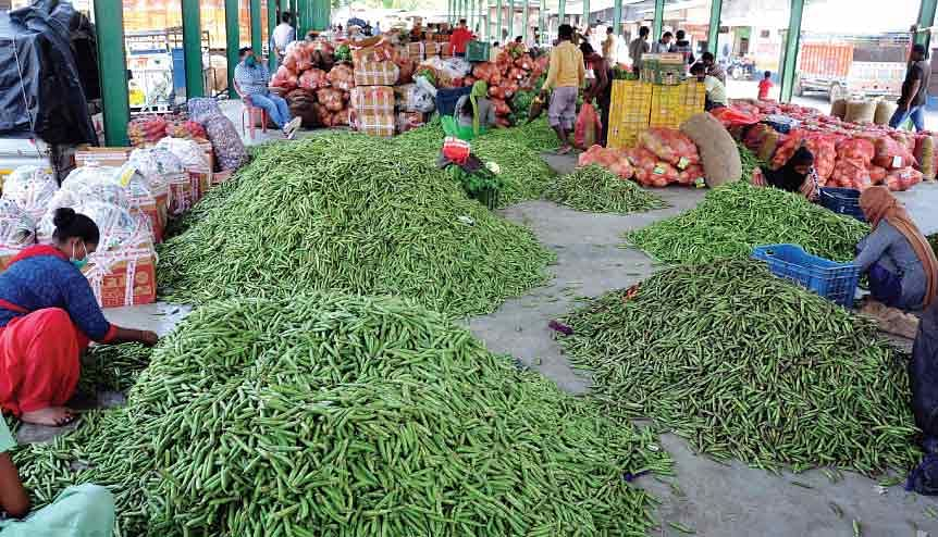 Green shoots of growth in India could prove doomsayers wrong on economic contraction